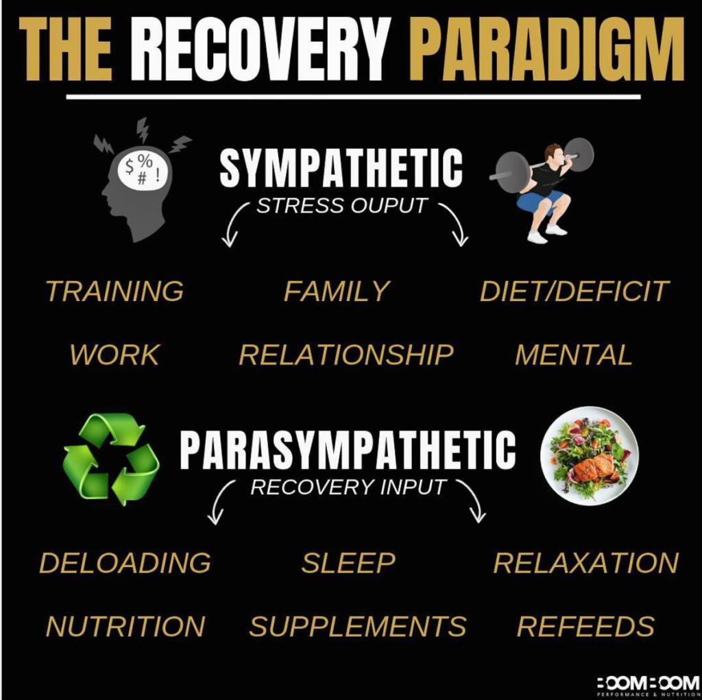 Recovery Paradigm Infographic