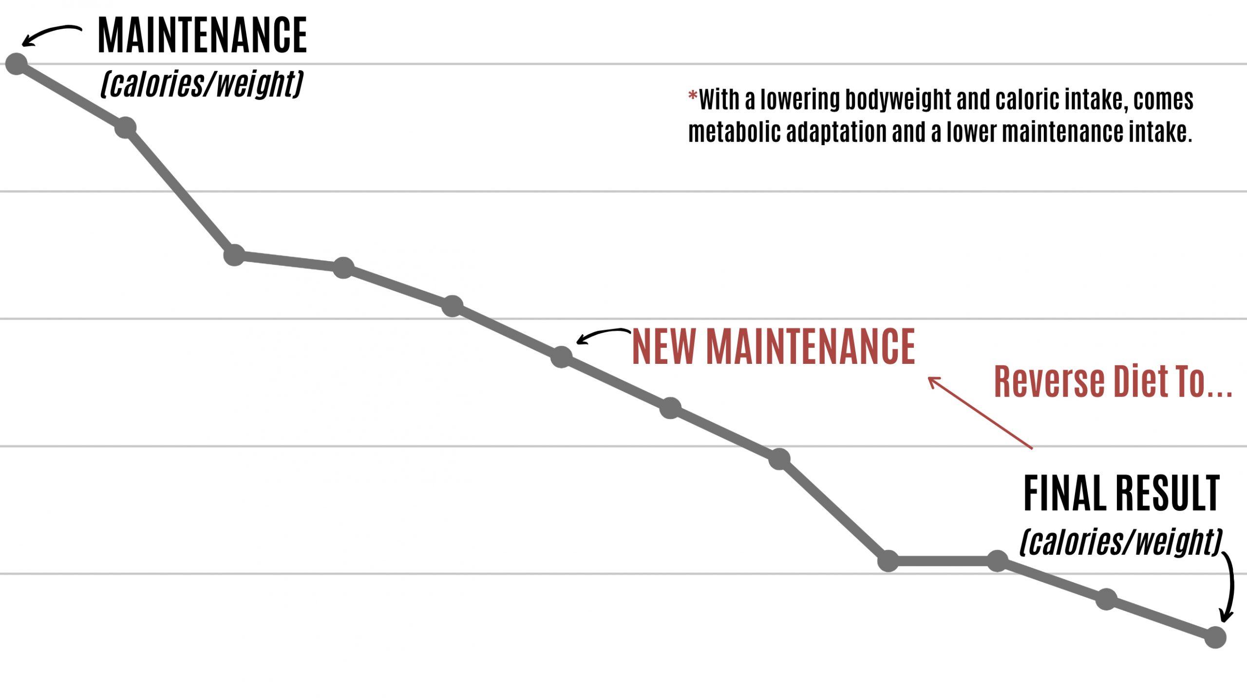 Infographic Showing True Reverse Diet Process