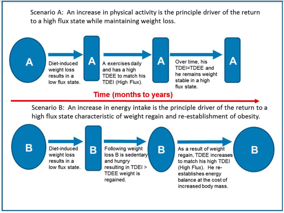 Intake vs. Activity