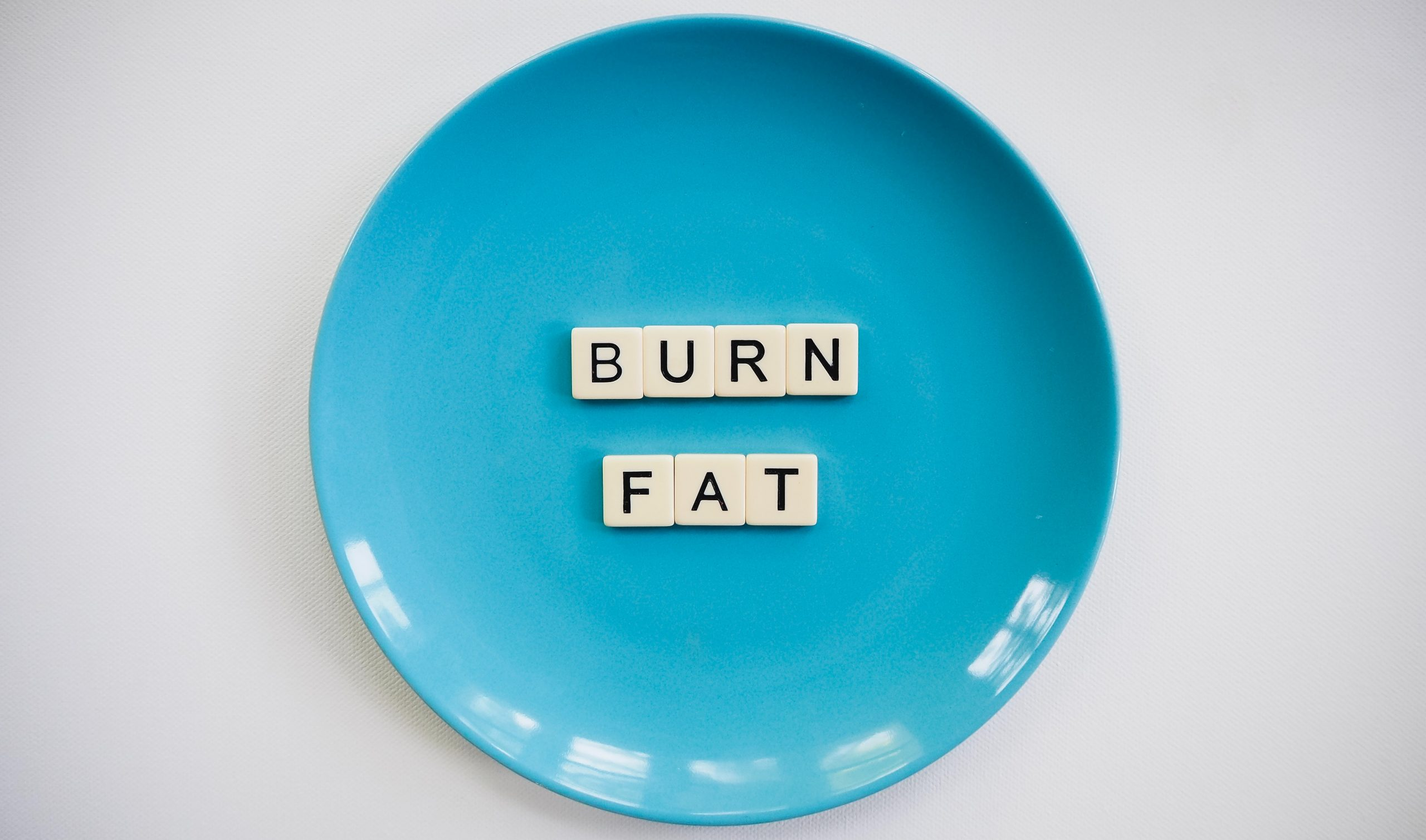 High fat diets store more body fat